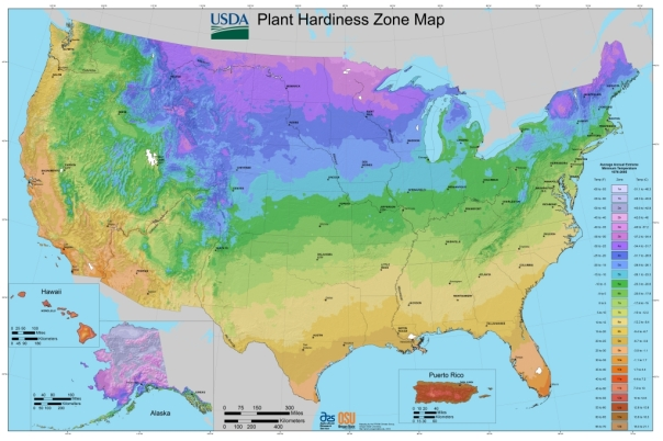 New USDA Plant Hardiness Zone Map