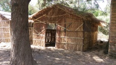 House for growing oyster mushrooms in Mchewe Village, Mbeya, Tanzania