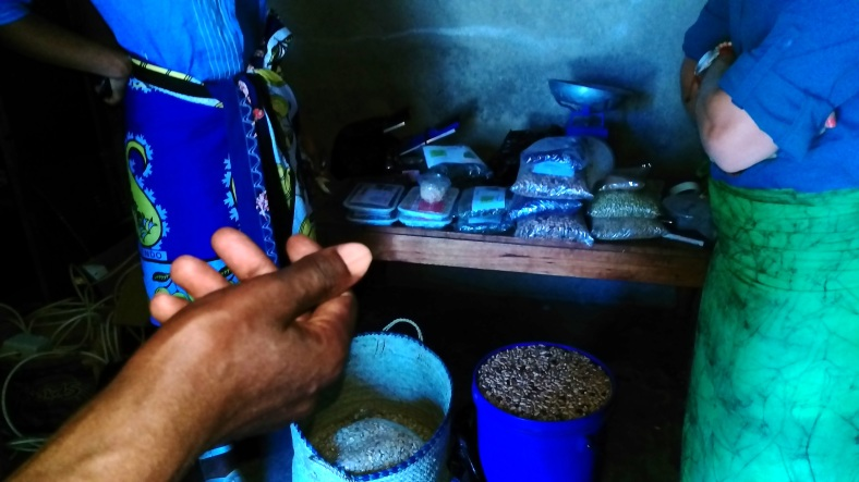 Beans, rice, corn, and solar dried products of the Women's group in Mchewe Village, Mbeya, Tanzania.