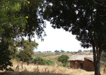 The view in Mchewe Village, Mbeya, Tanzania.